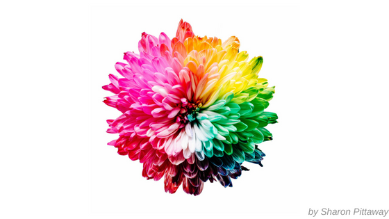 farben-branding