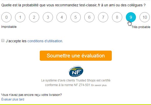 NRS Bewertungsformular FR.png